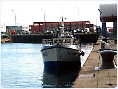 Le Port d'Arcachon - Chalutier